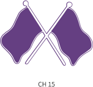 band-emblem-purple-two-cross-flags