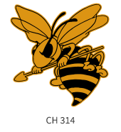 mascots-emblem-black-gold-bee
