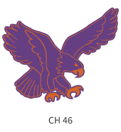 mascots-emblem-purple-orange-eagle